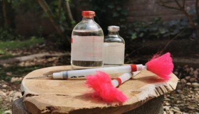 Het is mogelijk om moeilijk benaderbare dieren te vaccineren van op afstand met een blaaspijp of verdovingsgeweer.